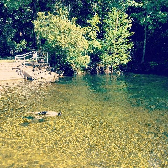 Poe Springs in High Springs, FL