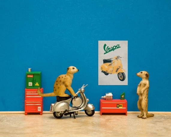 vespa scooter garage art meerkat mechanics blue  by WildLifePrints, $18.00