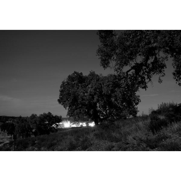 """""""10 Poblado del Cerro del Hierro. Sierra Norte de Sevilla"""" Minas. Paisajes explorados. Año 2009. Tamaño: 46,84 x 70 cm. Técnica: Copia Cromogénica. Laminado mate. Montada sobre Dibond 3 mm. Bastidor trasero de madera. http://moolacool.com/es/231-paco-valverde-minas-paisajes-explorados-10-fotograf%C3%ADa.html"""