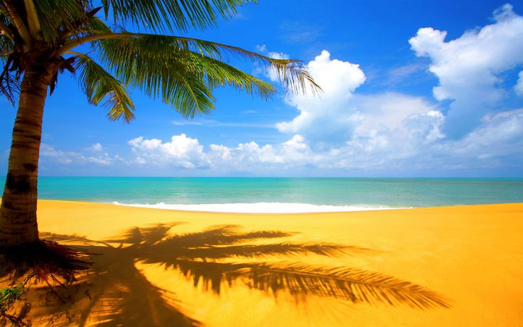 ♥PT♥ 4 TRANQUIL-CALMING BEACH SCENE