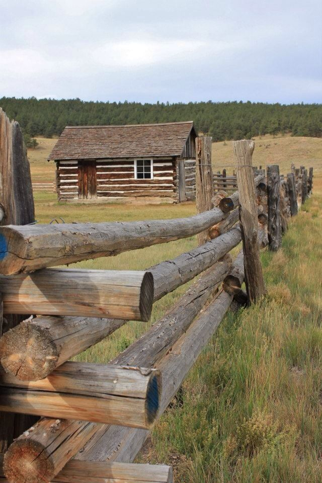 Log Pole Fence ~ Log fence a collection of other ideas to try