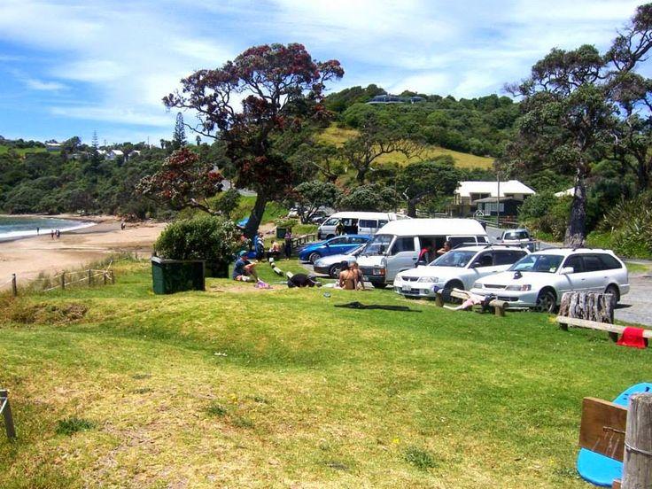 New Zealand picnic....