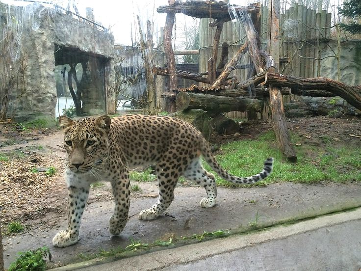 Zoo Jihlava - Czech Republic
