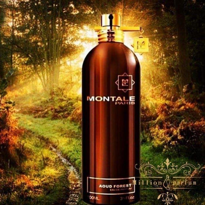 Montale Aoud Forest 😍 meşə və dəniz aromalarının qoxusunu yaşayan maraqlı  bir ətir👍🏽 Kompozisiya dəniz notları, ağ müşk,… | Vodka bottle, Whiskey  bottle, Whiskey