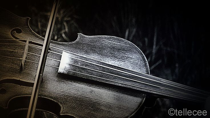 The violin by Tian Cronje on 500px