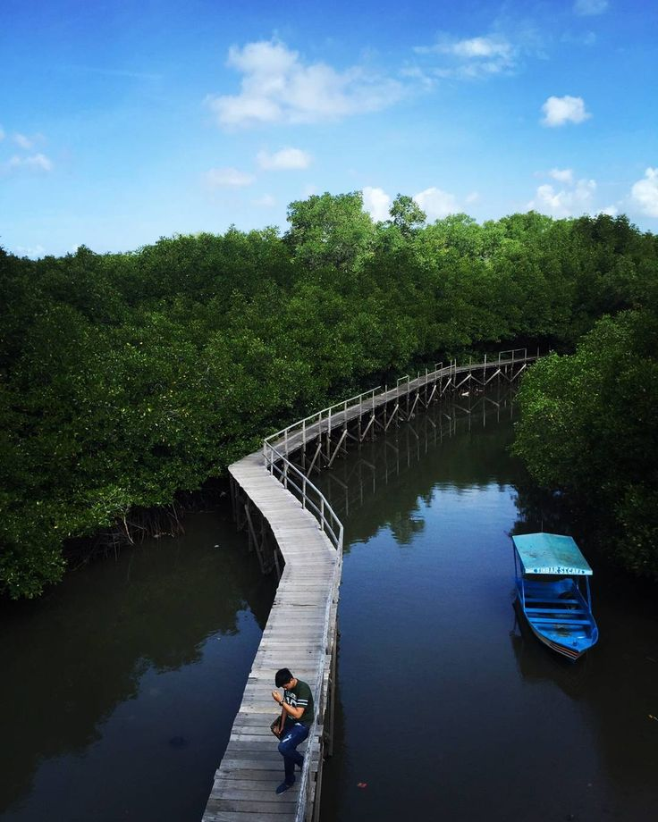 Ekowisata Mangrove Wanasari atau yang dikenal juga sebagai Ekowisata Tuban Bali di kelola oleh kelompok nelayan yang mempunyai kesepakatan untuk menjaga kelestarian hutan mangrove dengan membuatnya menjadi tempat ekowisata.[Photo by instagram.com/ferdian_gilang]