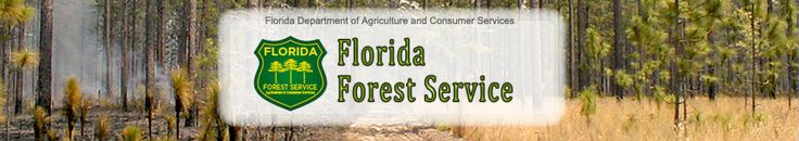 Florida Forest Service- St. Johns County Division, 4950 CR 208, St. Augustine, FL 32092, (904)825-5082