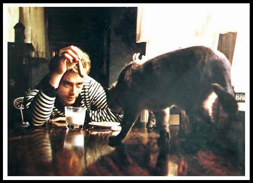 James Dean, fotografiado por S.Roth