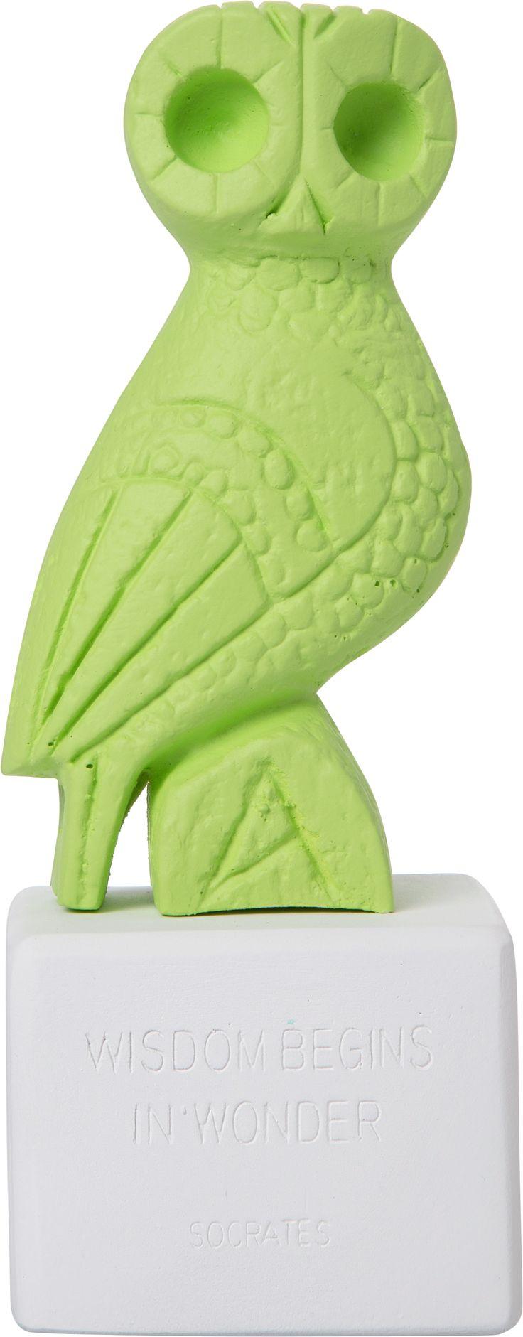 Owl Myron Lime