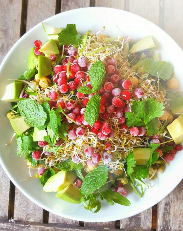~ Lingon, avocado, alfalfa, mungbönor, kikärtor, koriander, lime, mynta, sesamolja ~