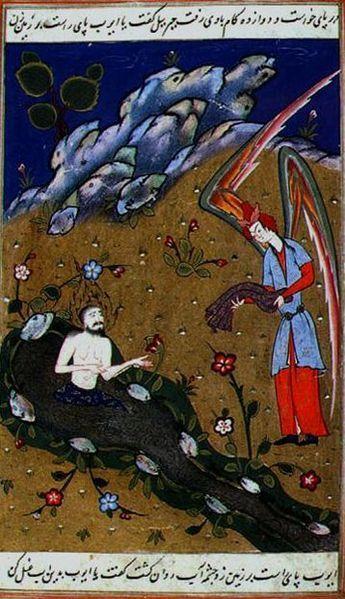 Job the prophet http://www.pinterest.com/nenarok/indian-persian-miniatures/