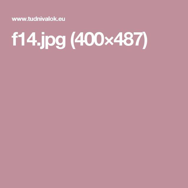 f14.jpg (400×487)