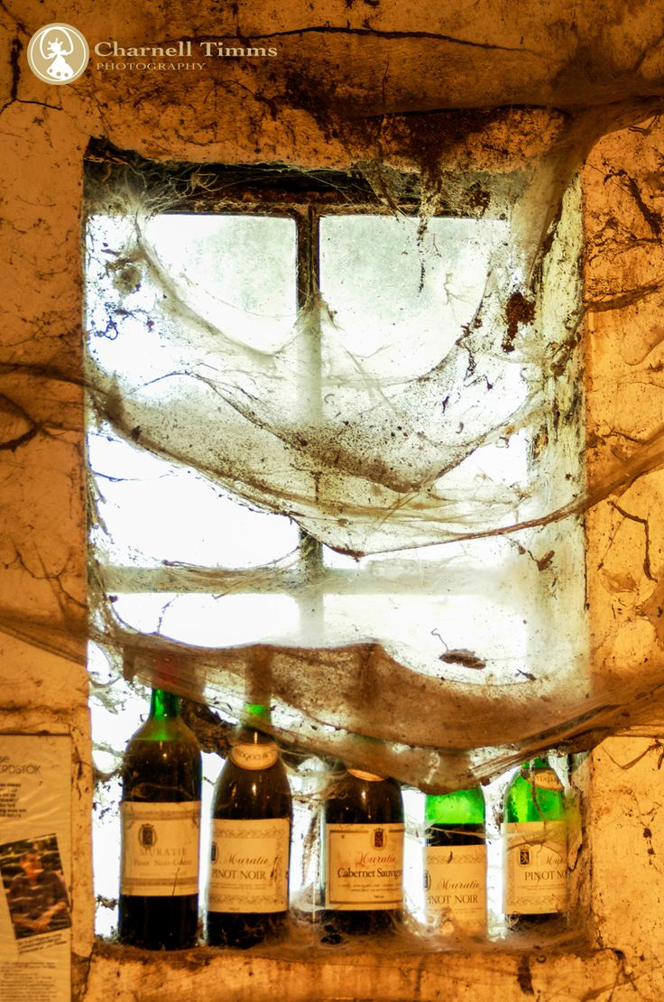 Muratie Wine Tasting Room- a blast from the past