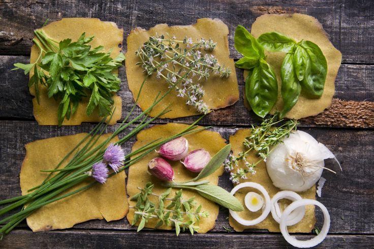 Come coltivare il basilico in vaso sul balcone: tutti i consigli