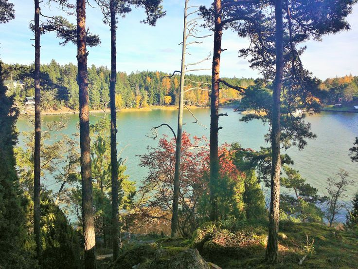 Wilderness in Finland ....Pristine and clear water, air and nature !!!!!!!!!