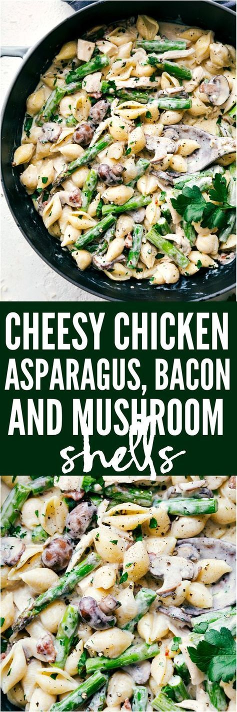 Cheesy Chicken, Asparagus, Bacon, and Mushroom Shells are made in one pan with an incredibly creamy white cheese sauce. This is a quick and easy meal that will become a new family favorite!
