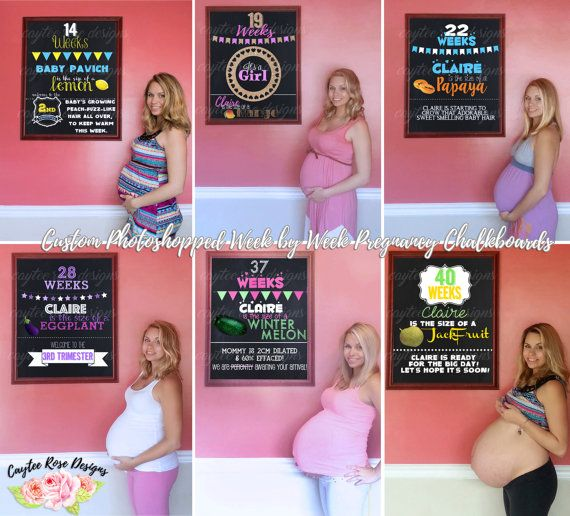 Personalized Week By Week Pregnancy by CayteeRoseDesigns on Etsy