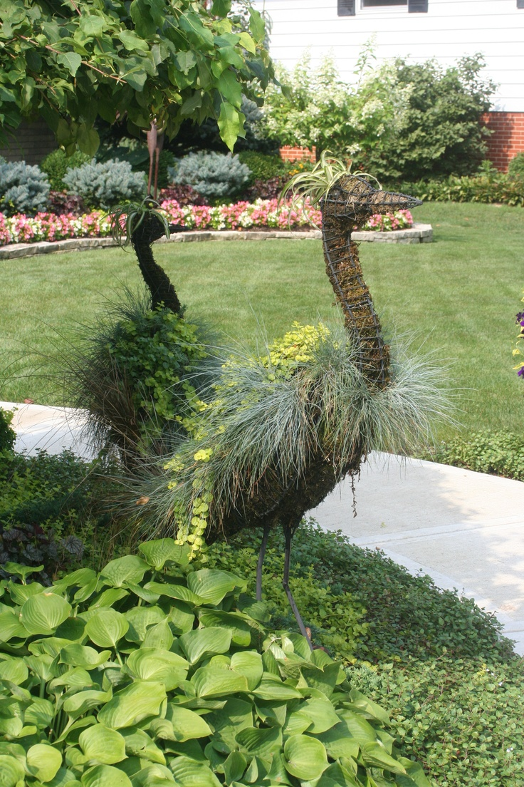 69 best Standards and Topiary images on Pinterest | Gardening ...