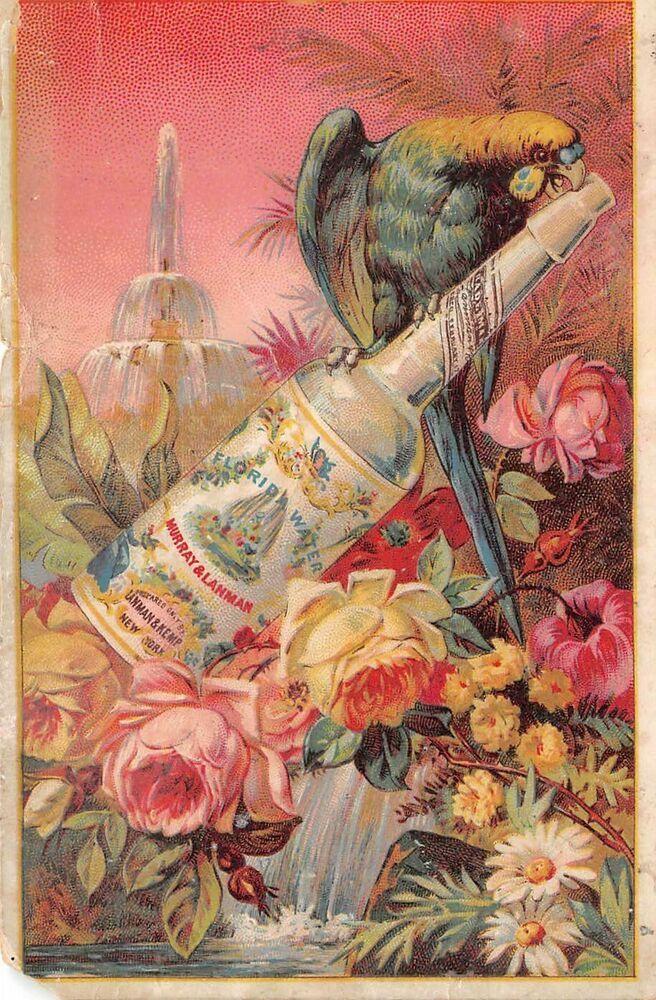 Victorian Trade Card Florida Water Fragrance Murray & Lanman New