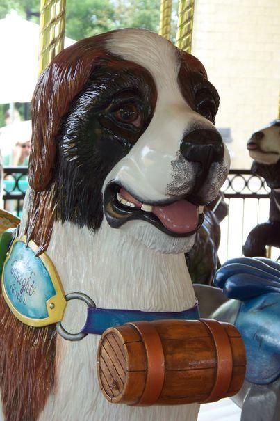 St. Bernard dog on a carousel