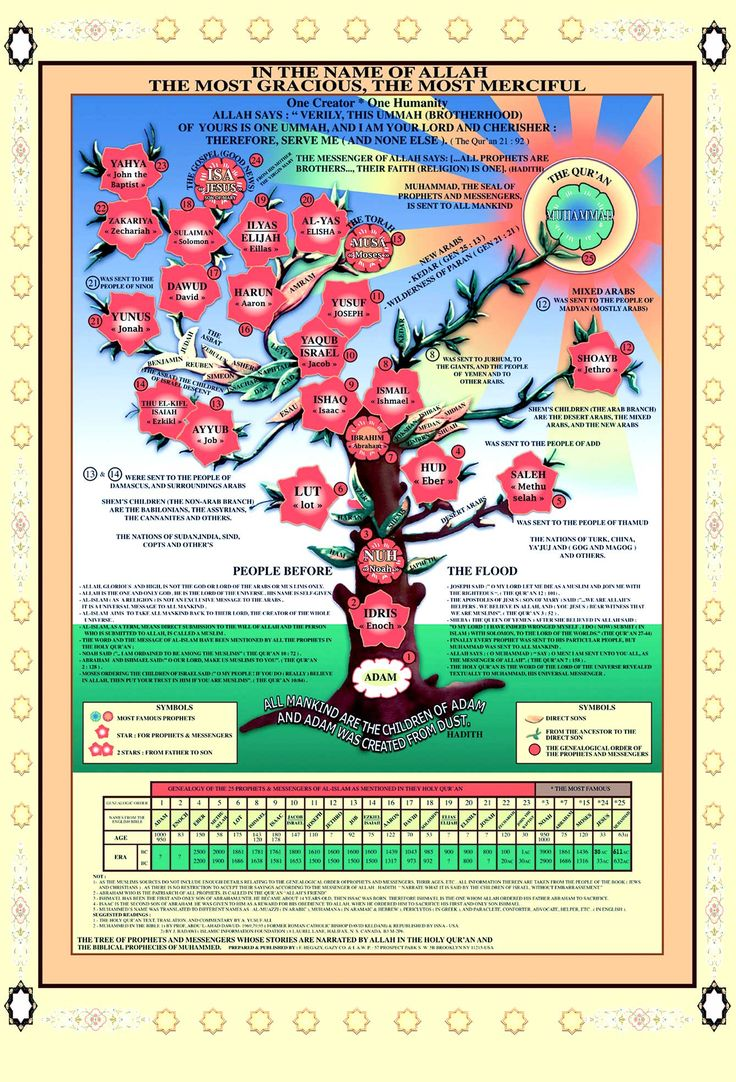 This is a nice poster that illustrates the tree of the beloved prophets, their ages, times of their lives and other information.