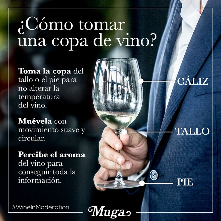 Parece sencillo, pero la forma de beber y sujetar una copa de vino puede tener muchos matices… ¿por dónde la coges tú: cáliz, tallo o pie? #AprendeConMuga /// It may seem simple, but there are many different aspects to holding and drinking a glass of wine. How do you hold it, from the bowl, the stem, or the foot? #LearnWithMuga #Muga #BodegasMuga #Caliz #Tallo #copadevino #Glassofwine
