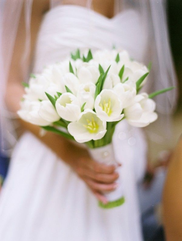 25 best ideas about white tulip bouquet on pinterest for Wedding bouquet tulips and roses