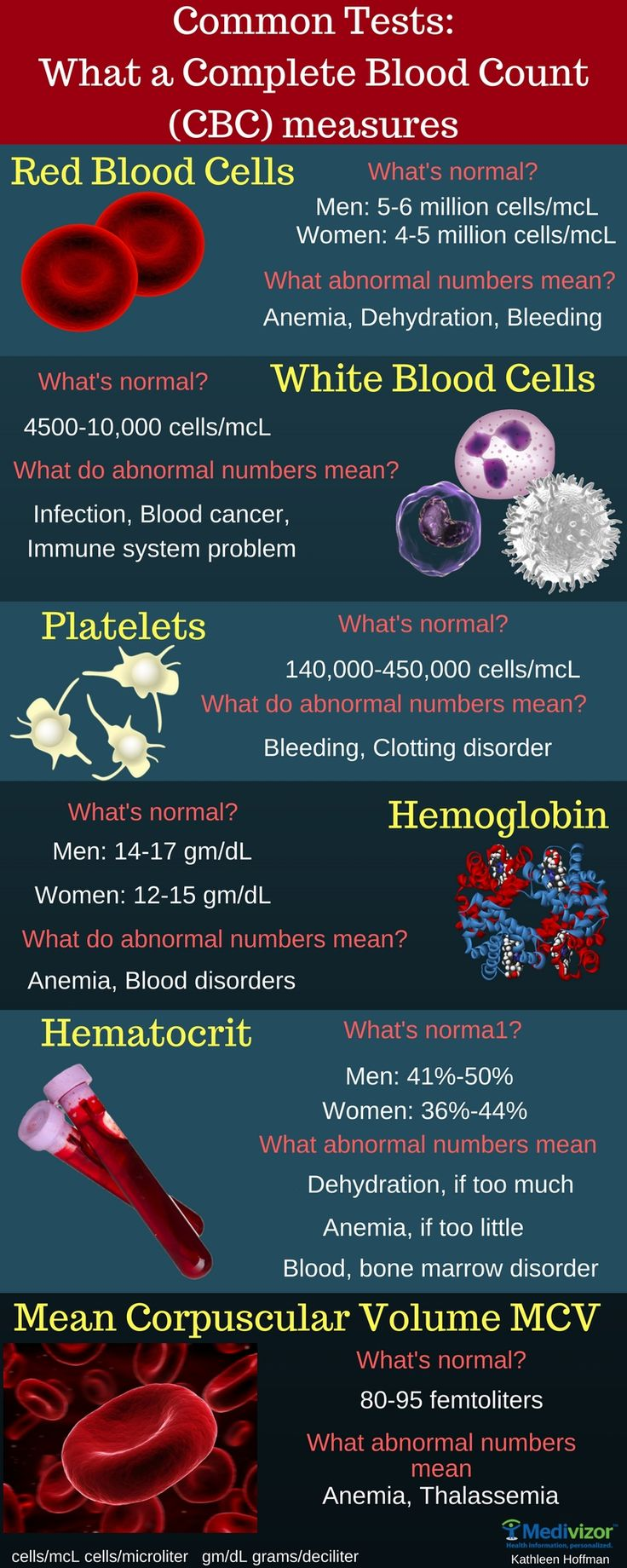 Common Tests Explained: Complete Blood Count or CBC Infographic