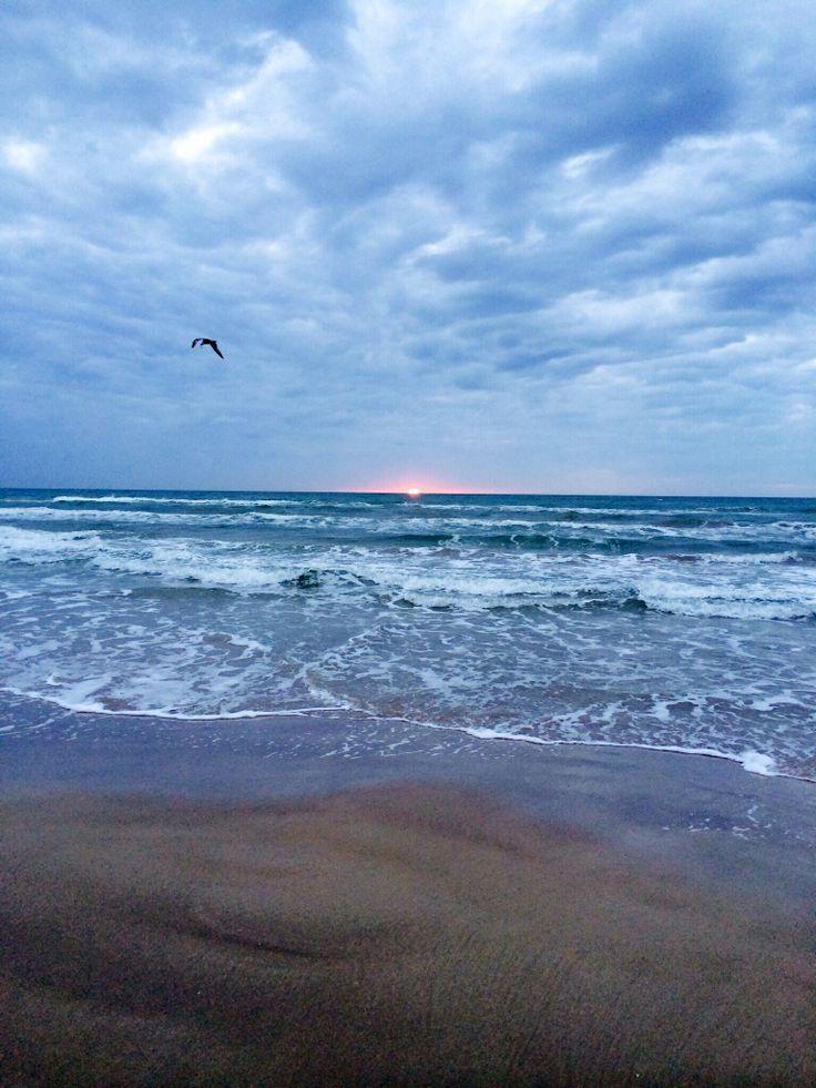Padre Island Vacation Rentals Corpus Christi