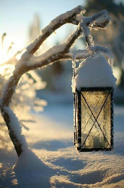 prachte kleuren door de zon die de sereen witte sneeuw verlicht
