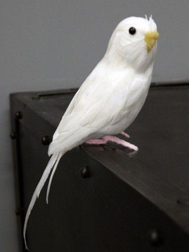 Puebco - Sztuczne ptaki - Biała papuga