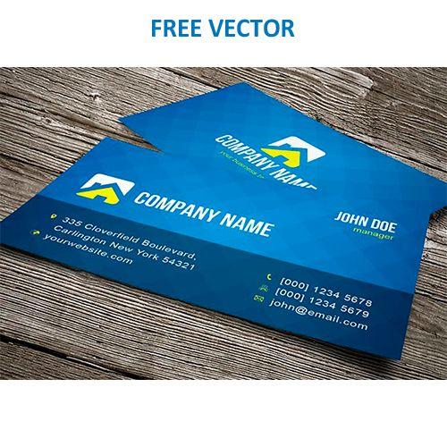 Синея визитка вектор