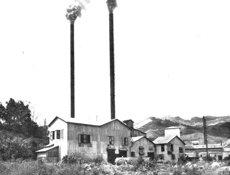 Central Pellejas, Adjuntas, Puerto Rico. Operó entre los años 1911 y 1949. Capacidad: 550 toneladas por día. Propietarios: Lucas P. Valdevieso, (1911).