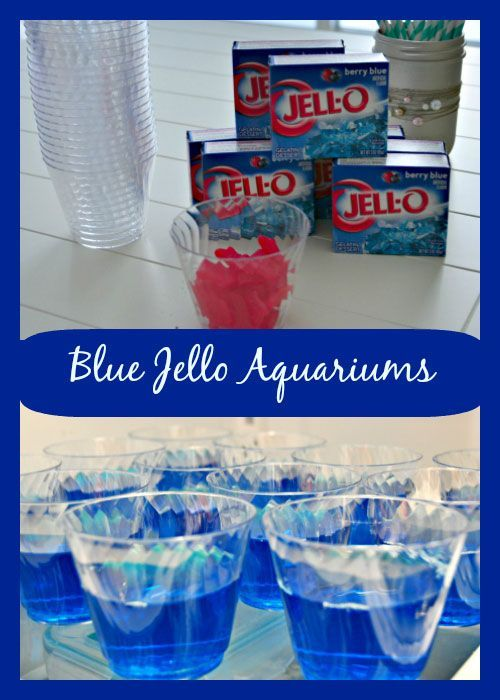 Blue Jello Aquariums