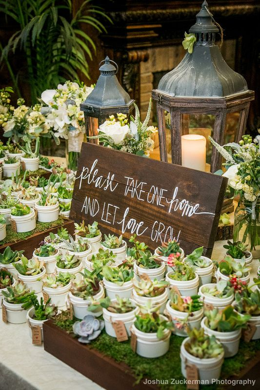 "succulent favor sign ""please take one home and let love grow"" written by Kyle Michelle Weddings"
