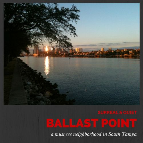 Ballast Point Neighborhood South Tampa | South Tampa's Hidden Treasure | Best Places to Live in Tampa | Homes for Sale