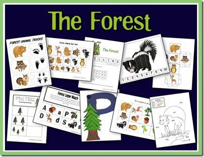forest preschool theme 1000 images about forest animals on preschool 802