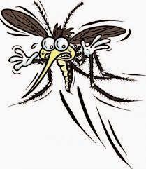 Remedes de grands meres : Trucs pour se debarrasser des moustiques