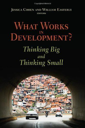 What Works in Development?: Thinking Big and Thinking Small by William Easterly.