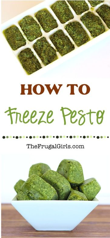 How to Freeze Pesto! - Easy tips to Freeze your extra Homemade Basil Pesto from TheFrugalGirls.com