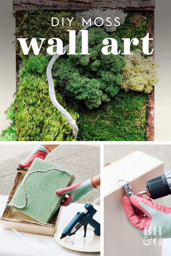 This Diy Moss Wall Art Will Liven Up Your Interiors All Year Long Moss Wall Art Moss Wall Diy Wall Art