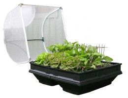 Raised Garden Bed Kits - Easy set up: Self-watering: Low maintenance: Great value