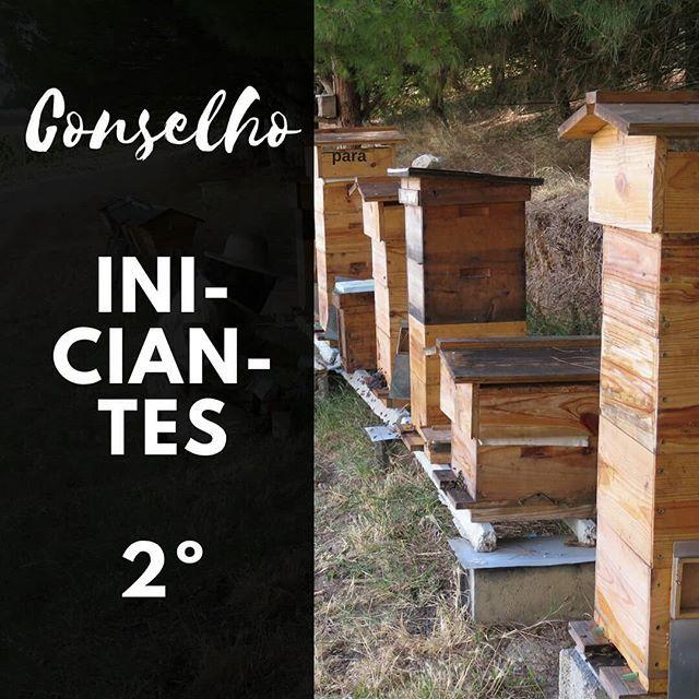Conselho para apicultores iniciantes #apicultor 2º- Deve-se reconhecer que quando se instala uma colmeia de abelhas deve pensar duas vezes antes de tentar maximizar a sua alta produção. #apicosta #apicultura #abelhas #bees #beekeeping #colmeias #apicultoriniciante  #Regram via @apicosta
