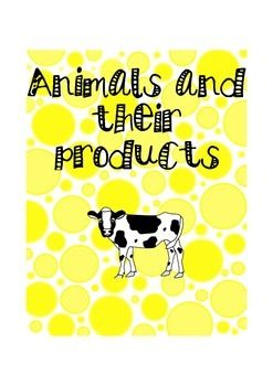 An easy match up activity for 3-6 year olds/preschoolers OR 6-9 chilldren  to see what animals produce which product.  Great for Montessori classrooms   8 different animals  Animals covered - cow - sheep - chicken -fish -squid -shellfish - bee - pig  Each has 1-3 products the animal gives humans.