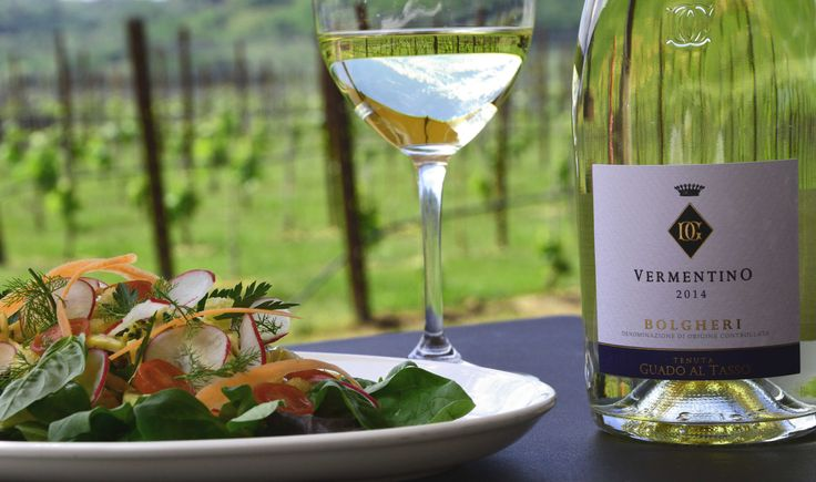 """VERMENTINO GUADO AL TASSO with """"Chicken salad with fresh vegetables and handmade mayonnaise"""" Rinuccio 1180"""