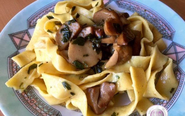 Ricetta pappardelle fatte in casa ai funghi porcini Oggi ho preparato per voi uno dei miei piatti preferiti in assoluto: le pappardelle ai funghi porcini! Ma attenzione non parliamo di pasta comune bensì di pappardelle fatte in casa. La ricetta è molt #ricette #pastafresca #primi