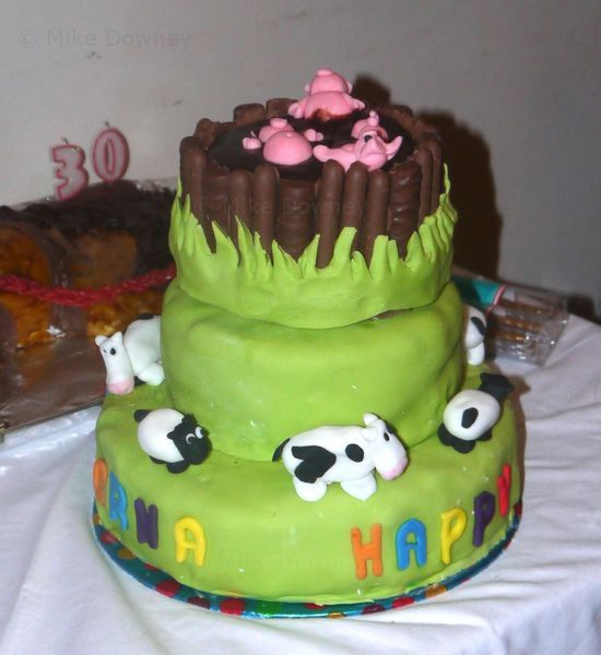 1000+ images about pig in the mud cake on Pinterest   Pigs in mud cake ...
