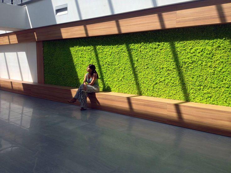 Giardino verticale in moss Green design