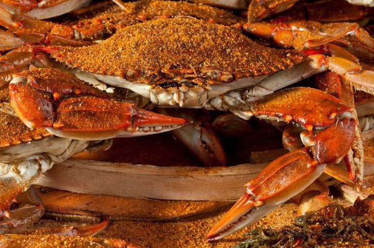 Maryland Old Bay Steamed Crab | Baltimore | Pinterest ...