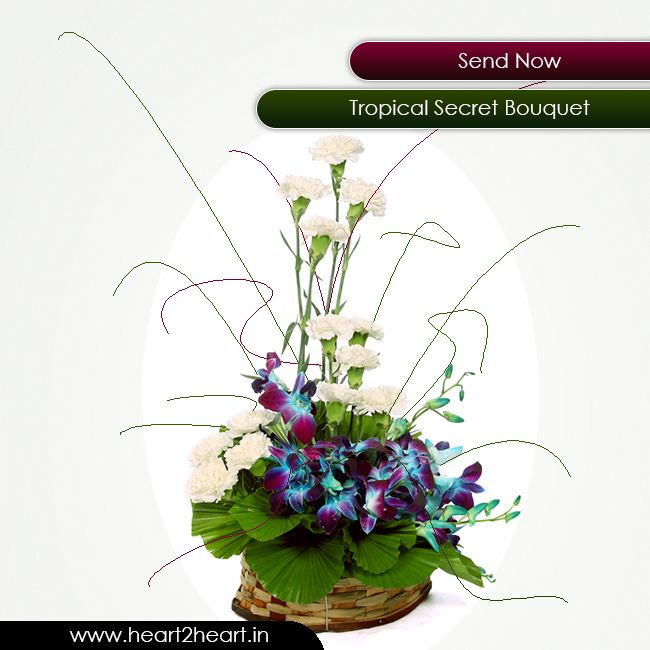 Send 13 white carnation along with 4 purple or blue orchid arranged in a basket. Visit http://www.heart2heart.in/  #flowers #heart2heart #bouquet #gifts